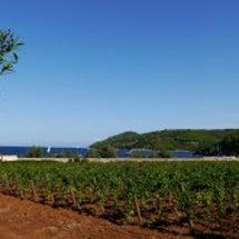 トスカーナ・エルバ島…