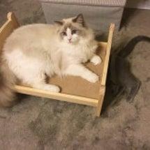 IKEAのベッド