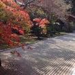 初秋の高野山を歩く入…