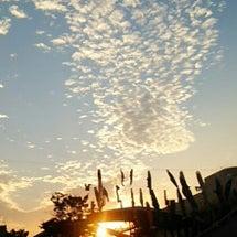 昨夕の空と大地の美