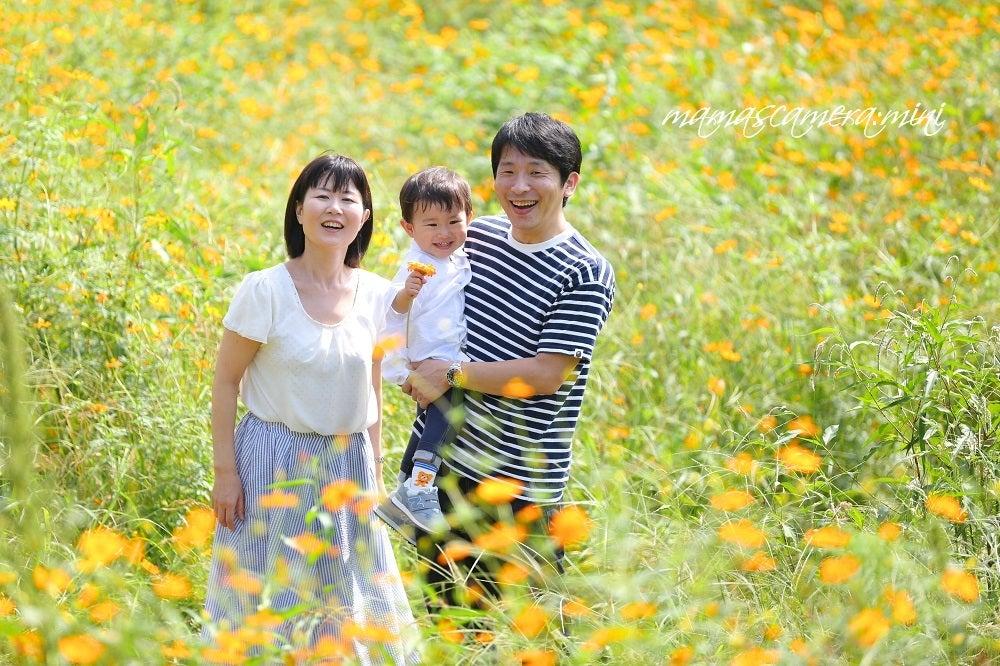 記念写真 東京江戸川   お宮参り 七五三 家族写真は …