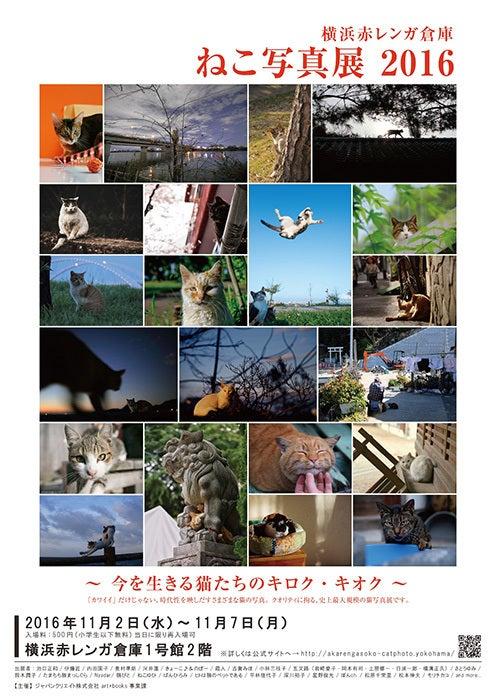 横浜赤レンガ倉庫「ねこ写真展 2016」