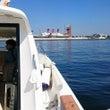 本日の小型船舶免許実…