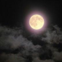 明日は満月、ハロウィ…