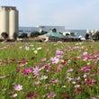 キリンビール福岡工場…