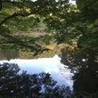 朝の薬師池公園