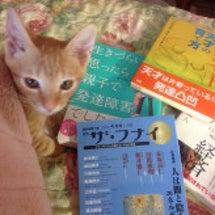 読書三昧の秋