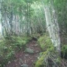 鳳凰三山の地蔵岳登山…