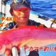 8月30日慶良間船釣…