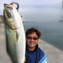 青物釣りにはまってま…