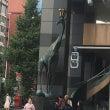 東京臨床小児歯科研究…