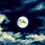 Moon(╹◡╹)