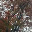 秋が深まる、、、、