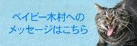ベイビー木村へのメッセージはこちら