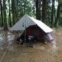 雨の昭和の森