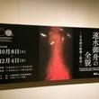 速水御舟の全貌―日本…