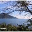 奥琵琶湖キャンプ場に…