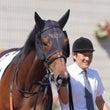 愛馬の写真;レイリオ…