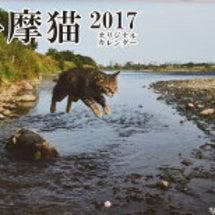 多摩ねこカレンダー