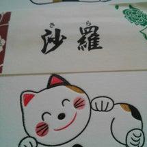 沙羅と猫 №1186