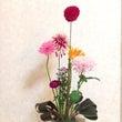 フラワーセラピー「花…