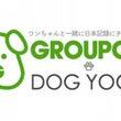 グルーポン+DOGY…