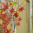 秋がいっぱいひばりの…