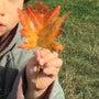 秋です!ハロウィンで…