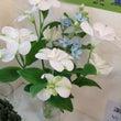 お花♪神戸市東灘区す…