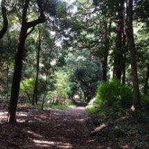 仕合わせる森林公園