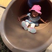 プレの感想と幼稚園選…