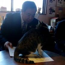 谷藤市長がもりねこに…