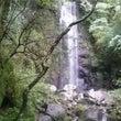 湯河原 「白雲の滝」
