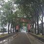 氷川神社参拝