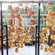 ★ 干し柿教室 ほっ…
