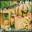 かぼちゃ(`▽´)♥…