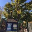 初めての円山動物園