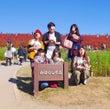 ひたち海浜公園 コキ…