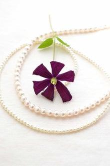 真珠とクレマチス(花水季さん)