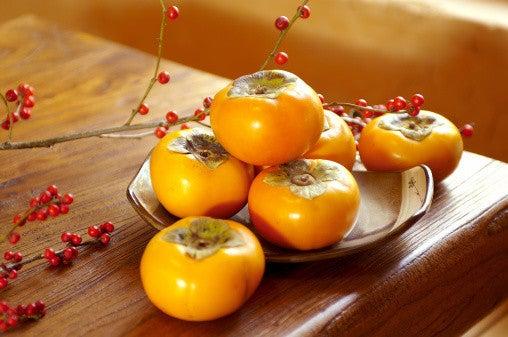 ひよこと柿♪