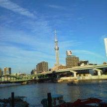 今朝の散歩は隅田川テ…