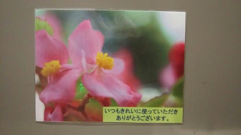IMG_20161021_142802969.jpg