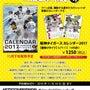 2017阪神タイガー…