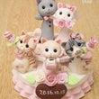 『5匹の猫のリングピ…