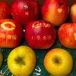 真っ赤な真っ赤な果実…