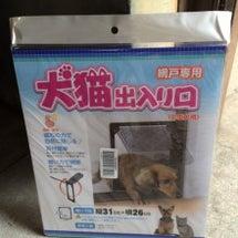 網戸張替 犬用出入口…