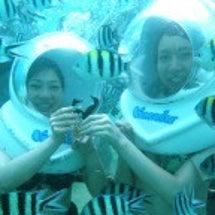 バリ島の楽しみ方