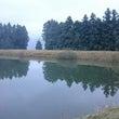 川内千年の森へ