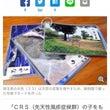 朝日新聞デジタル版 …
