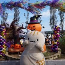 向日葵文化祭